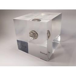 Acrylic cube Bismuth