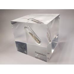 Acrylic cube Praseodymium